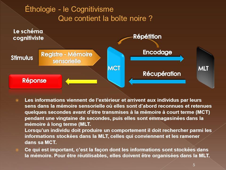 Éthologie - le Cognitivisme Que contient la boîte noire