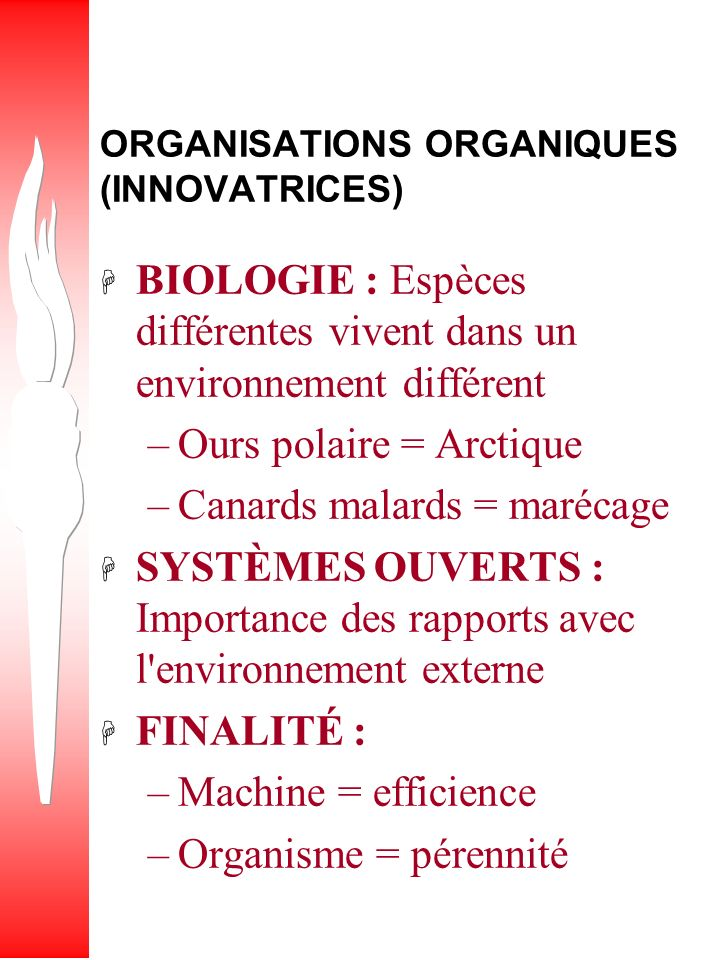ORGANISATIONS ORGANIQUES (INNOVATRICES)
