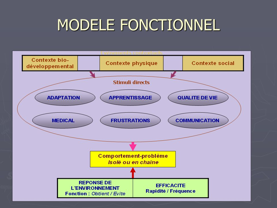 MODELE FONCTIONNEL