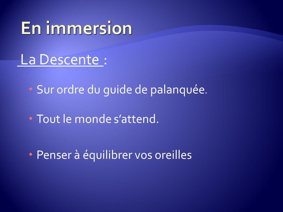 En immersion La Descente : Sur ordre du guide de palanquée.