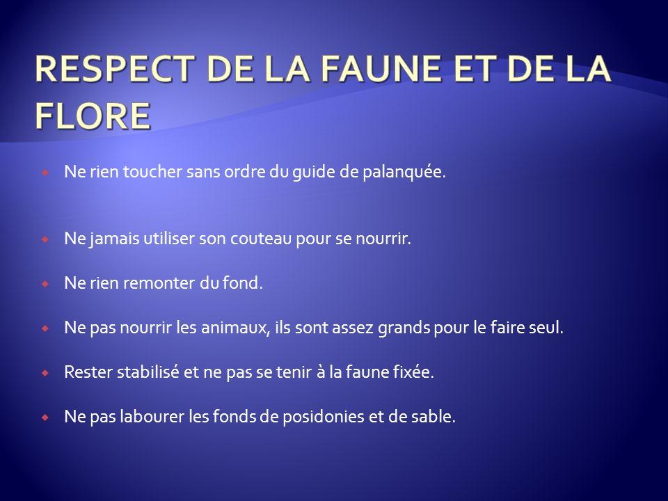 RESPECT DE LA FAUNE ET DE LA FLORE