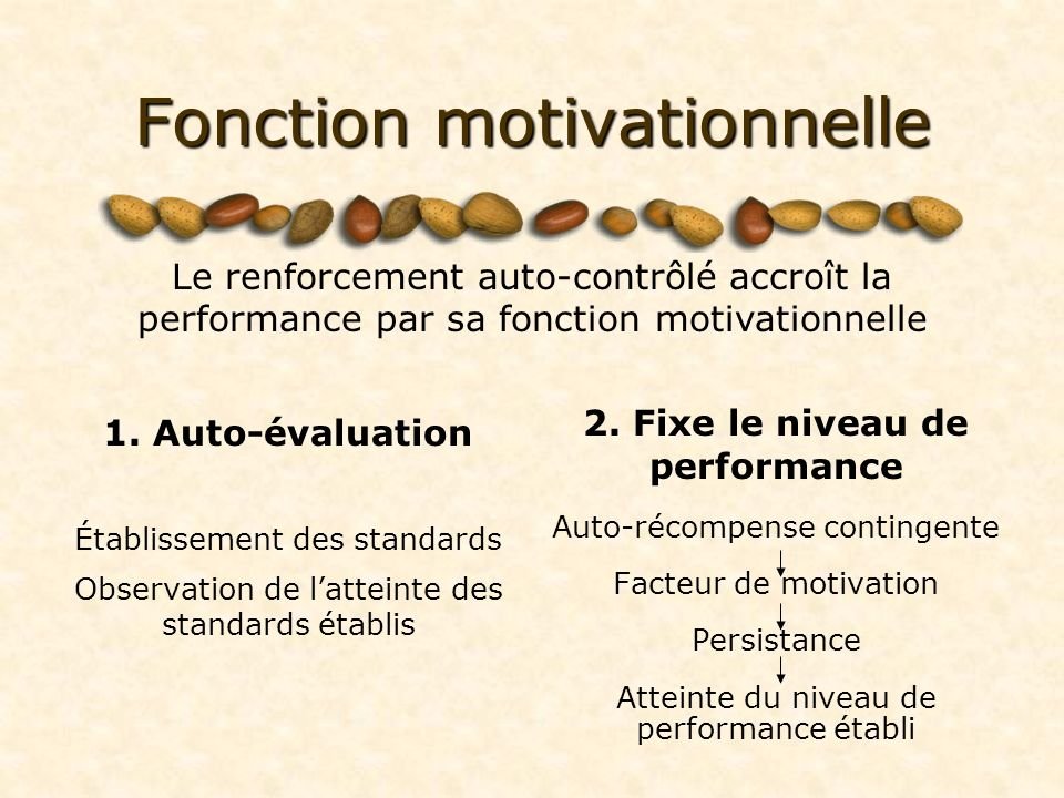 Fonction motivationnelle