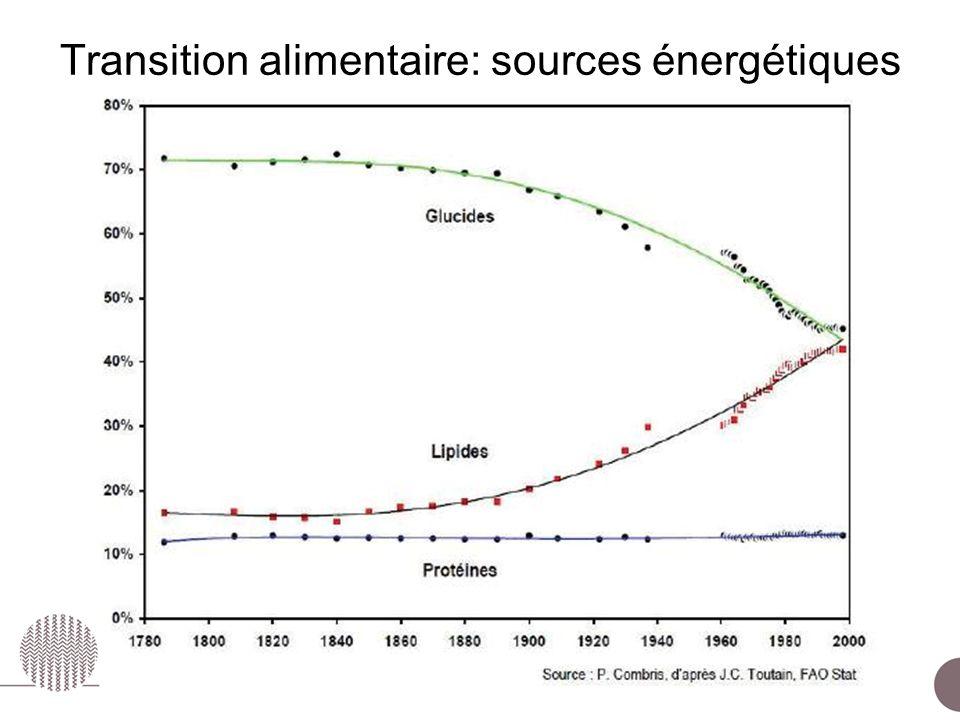 Transition alimentaire: sources énergétiques