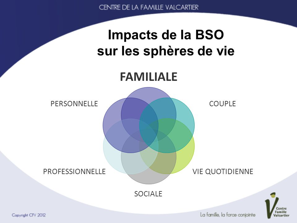 Impacts de la BSO sur les sphères de vie