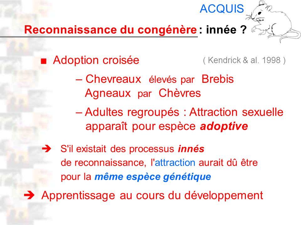 D25 : Modèles : Mammifères 17 : Facteurs acquis 4