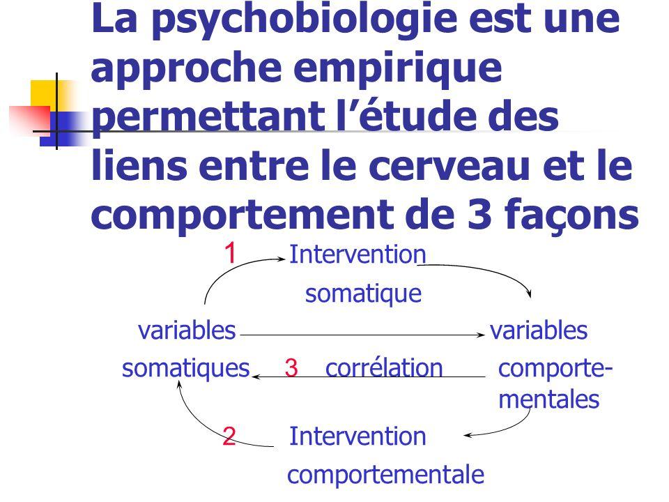 La psychobiologie est une approche empirique permettant l'étude des liens entre le cerveau et le comportement de 3 façons