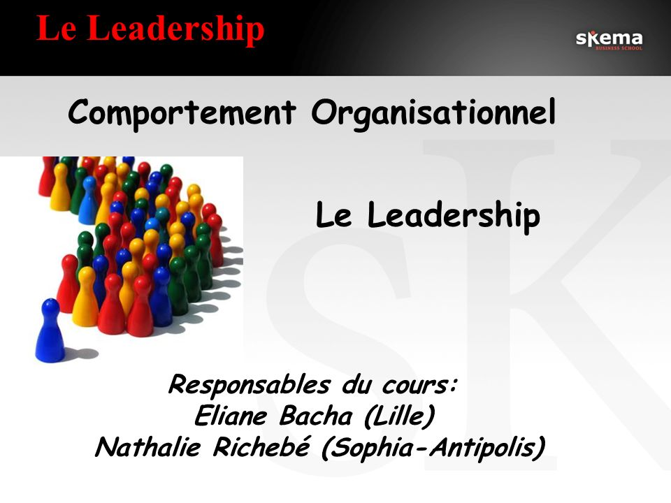 Comportement Organisationnel Responsables du cours:
