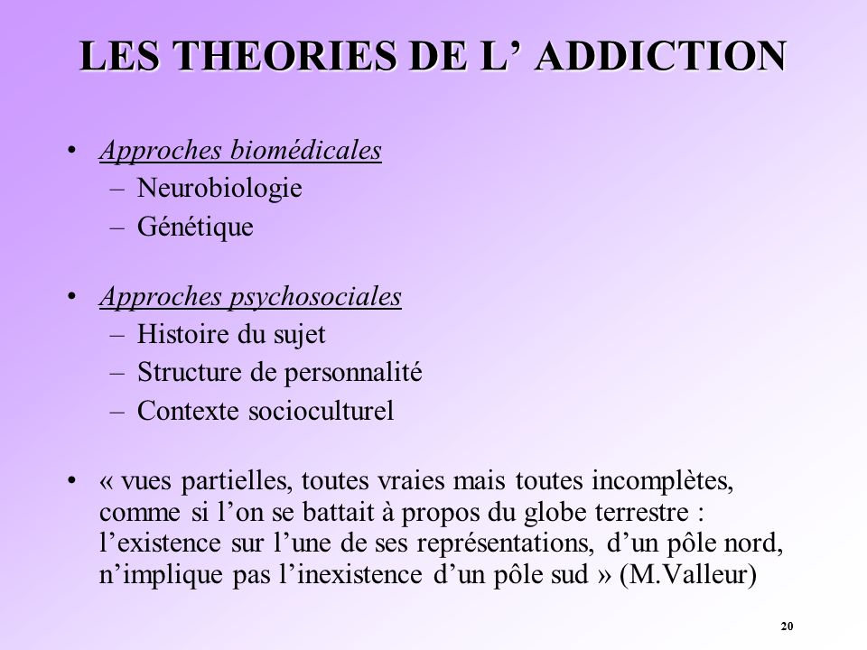 LES THEORIES DE L' ADDICTION