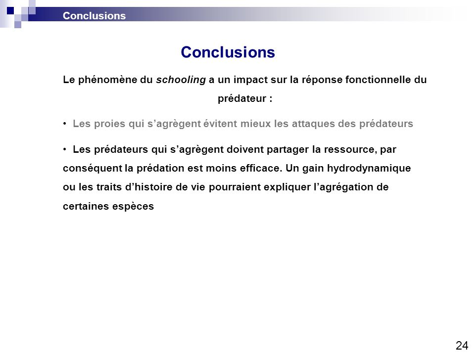 Conclusions 24 Conclusions