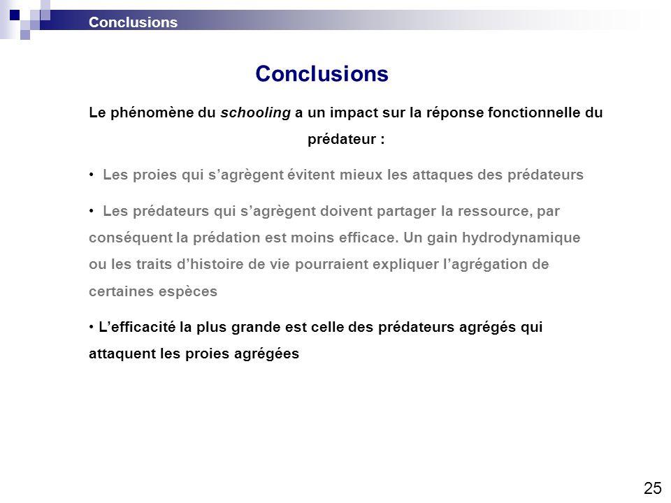 Conclusions 25 Conclusions