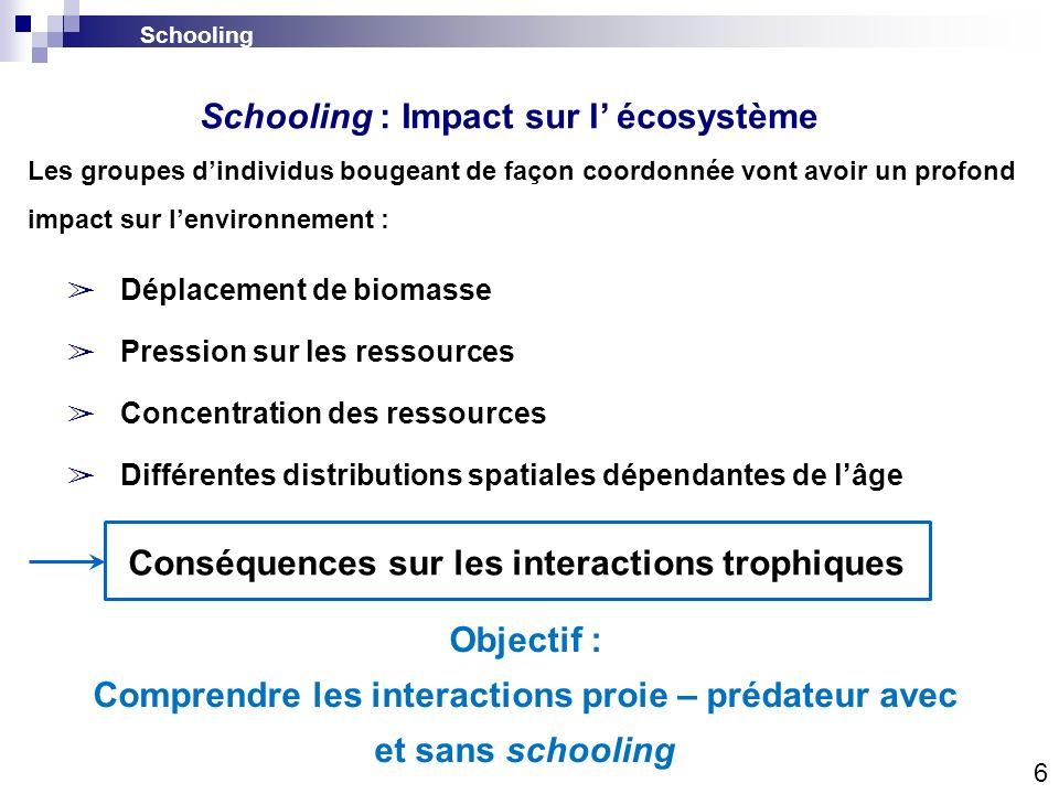 Schooling : Impact sur l' écosystème