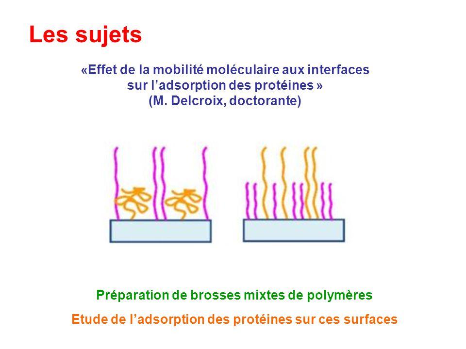Les sujets «Effet de la mobilité moléculaire aux interfaces