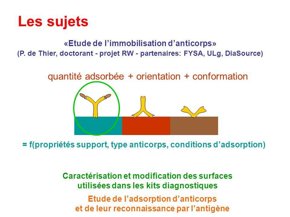 Les sujets quantité adsorbée + orientation + conformation