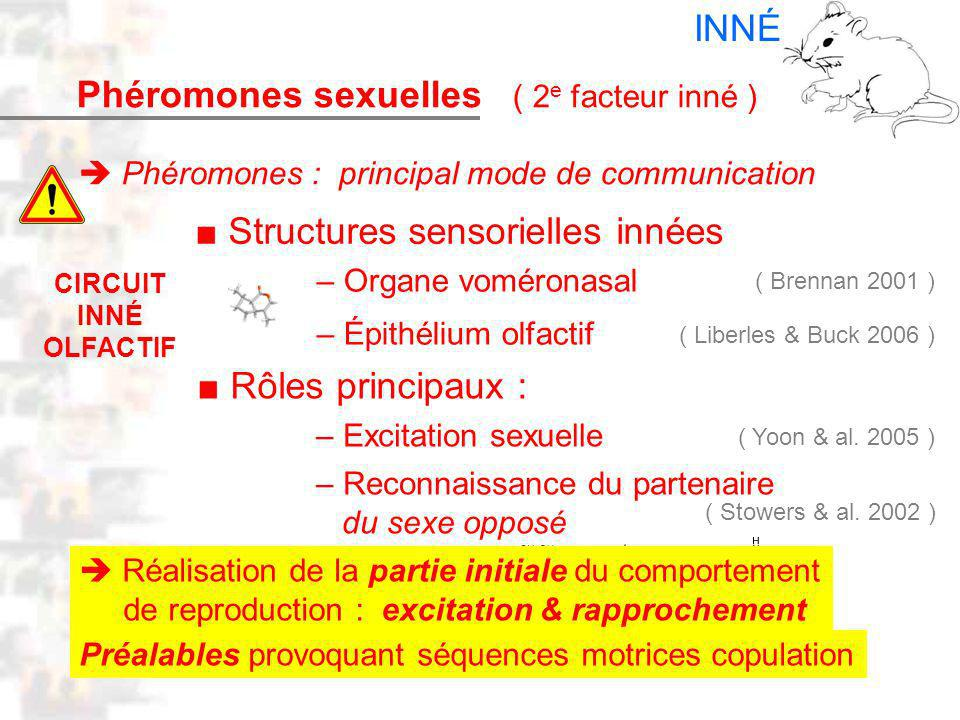 D17 : Modèles : Mammifères 9 : Phéromones 1