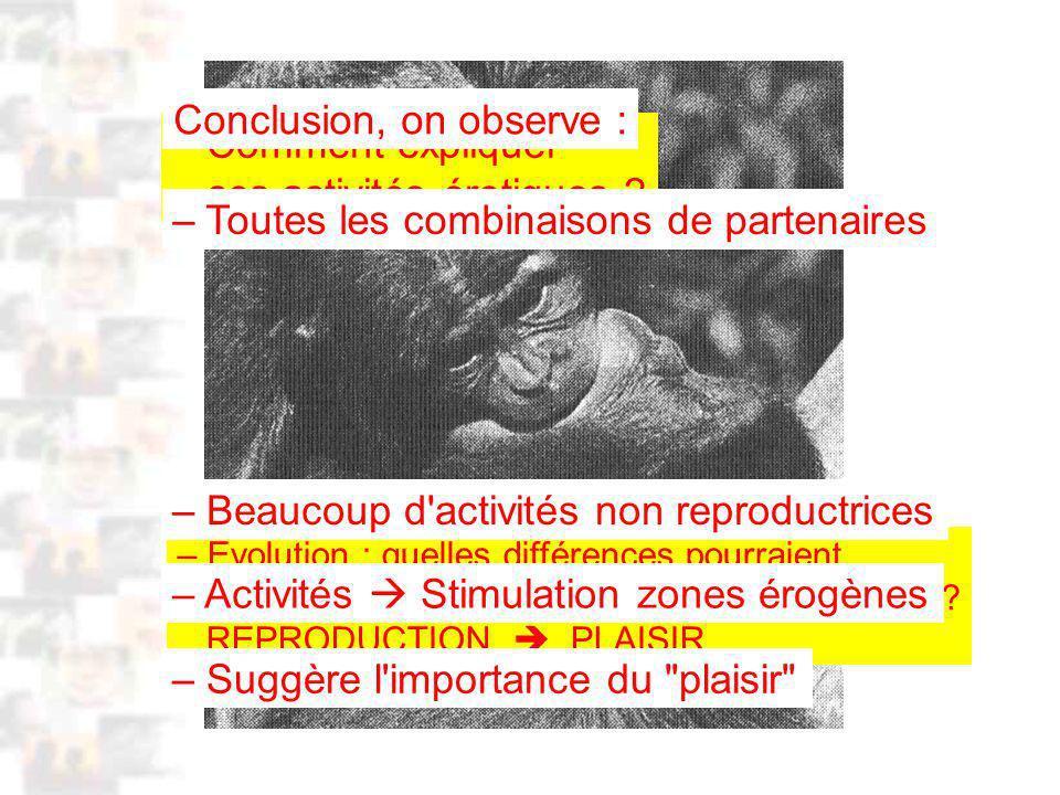 D44 : Modèles : Homme 5 : Évolution 4 : Photo 3