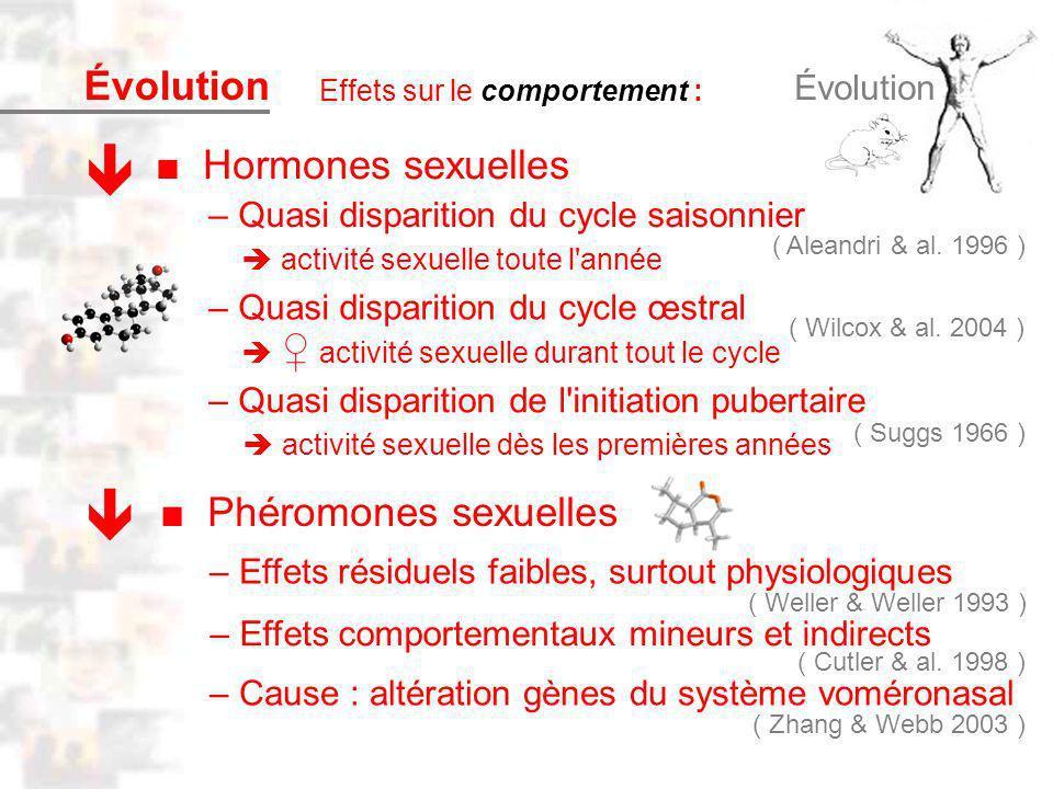 D45 : Modèles : Homme 6 : Évolution 5