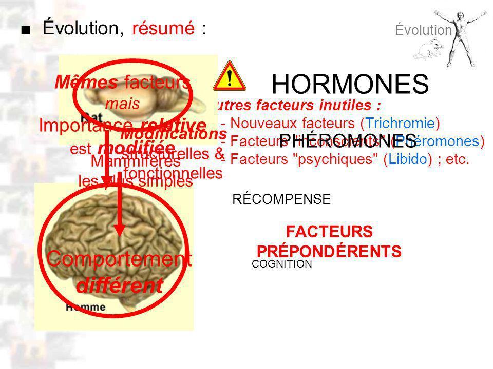 D49 : Modèles : Homme 8 : Évolution 7