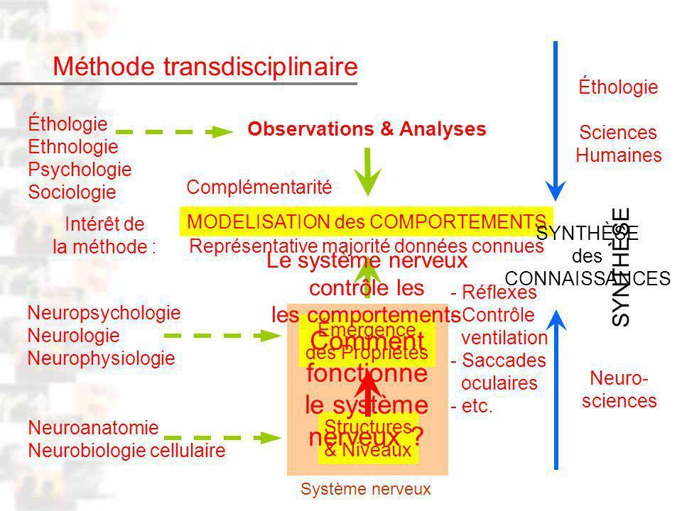 Méthode transdisciplinaire