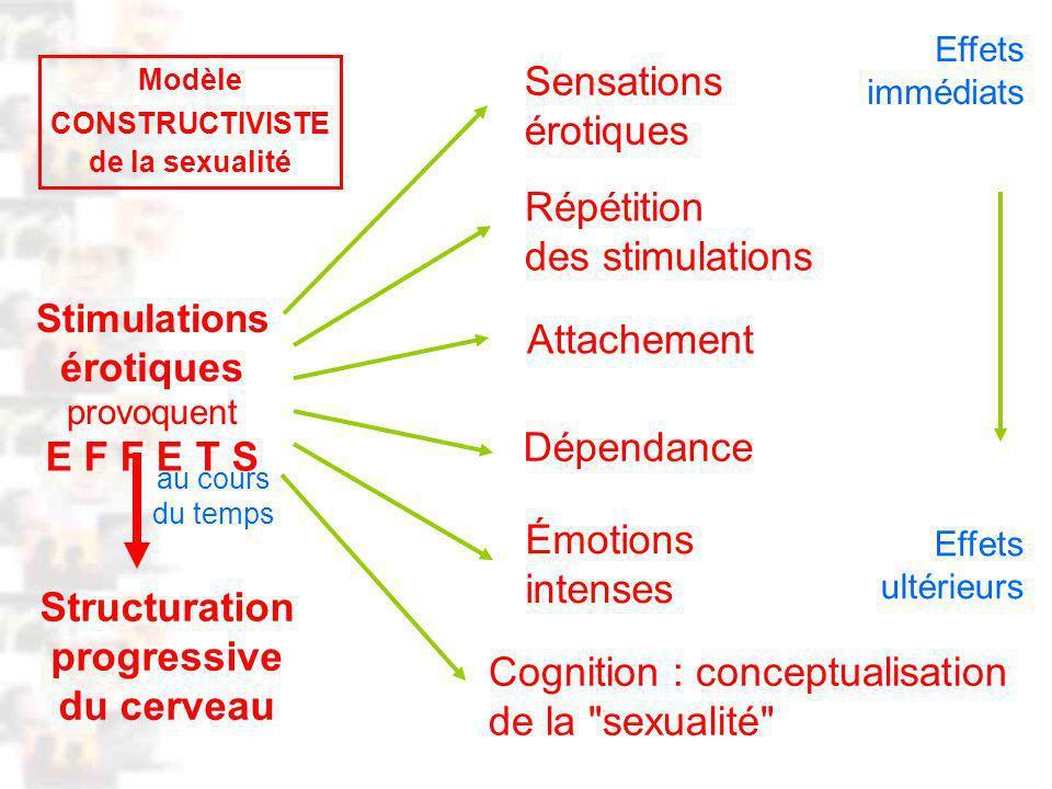 D60 : Modèles : Homme 18 : Analyse 6
