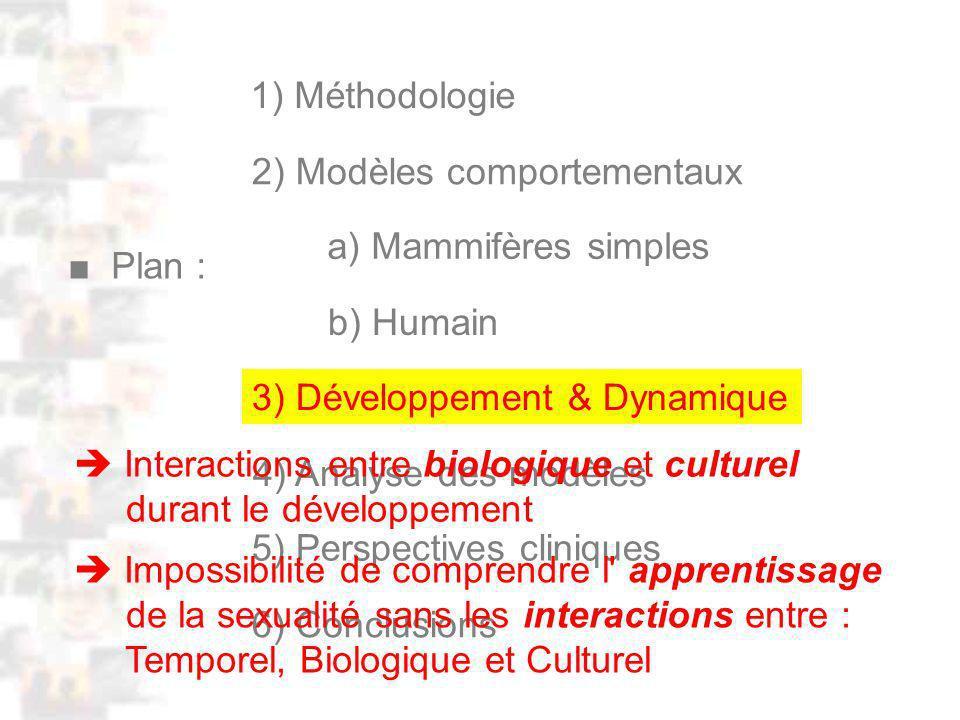 D61 : Modèles : Homme 19 : Plan : Développement & Dynamique 0