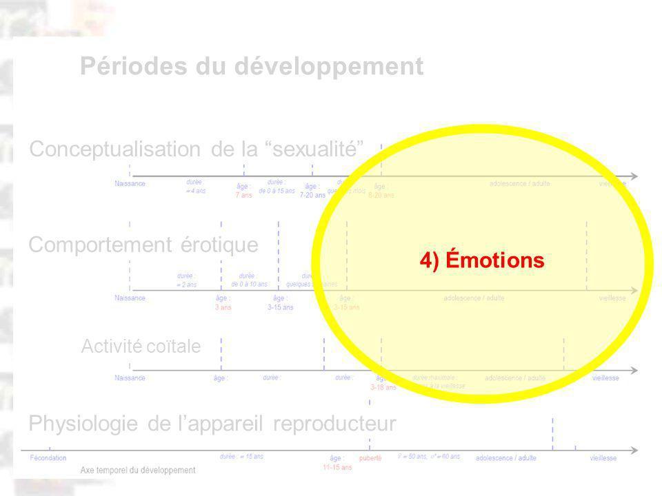 D84 : Modèles : Homme 20 : Développement & Dynamique 15