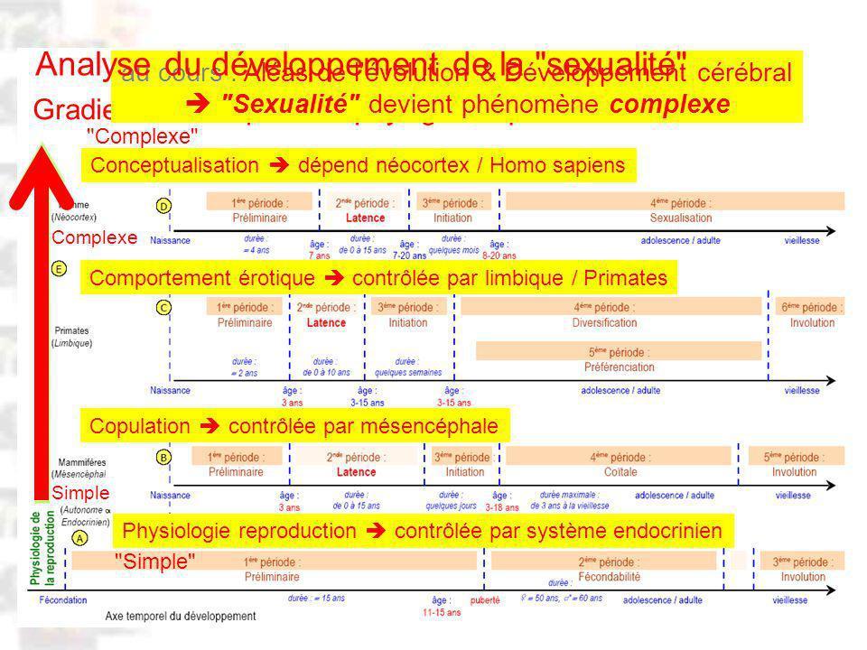 D98 : Modèles : Homme 20 : Développement & Dynamique 21