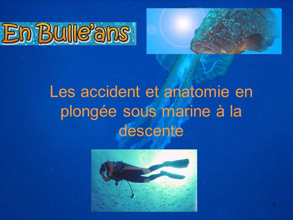 Les accident et anatomie en plongée sous marine à la descente