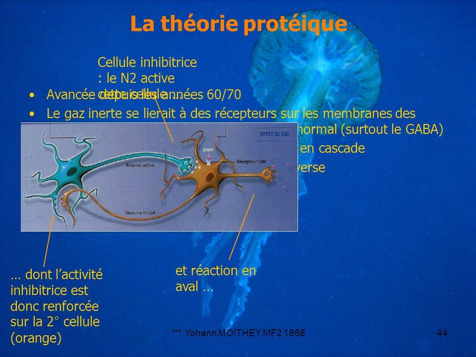 La théorie protéique Cellule inhibitrice : le N2 active cette cellule … … dont l'activité inhibitrice est donc renforcée sur la 2° cellule (orange)