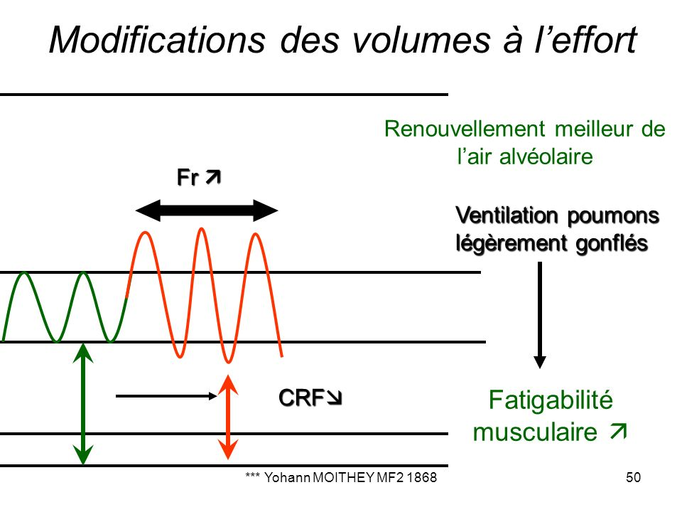 Modifications des volumes à l'effort
