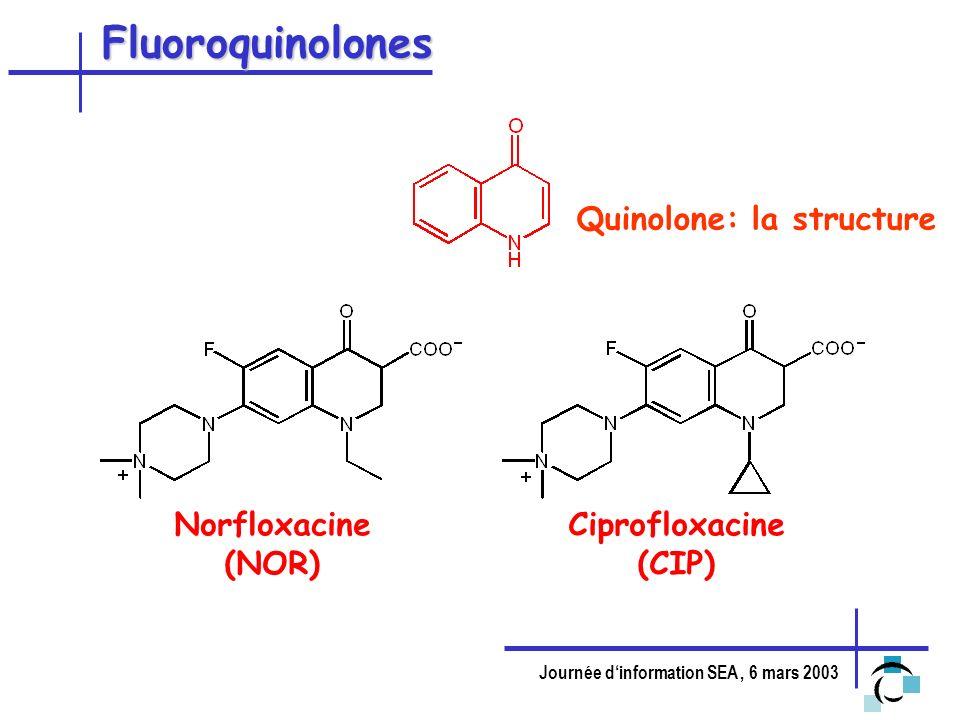 Fluoroquinolones Quinolone: la structure Norfloxacine (NOR)