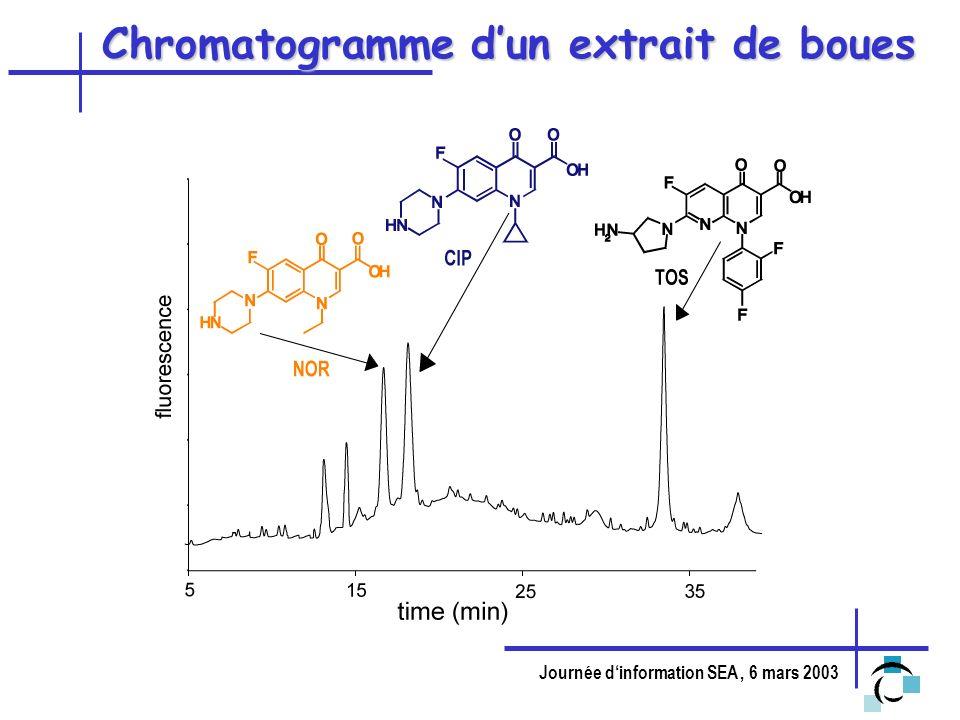 Chromatogramme d'un extrait de boues