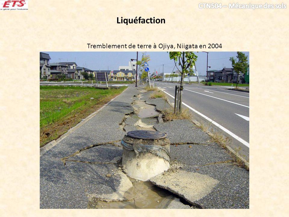 Tremblement de terre à Ojiya, Niigata en 2004