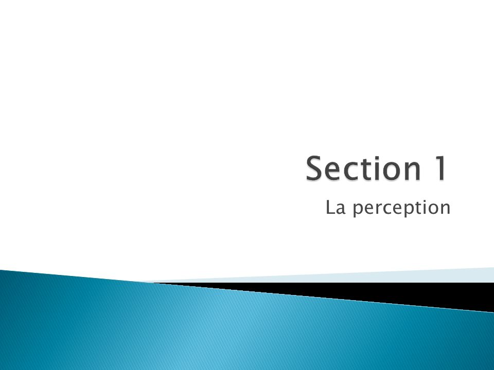 Section 1 La perception