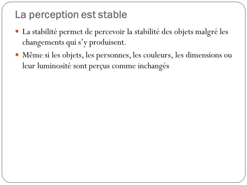 La perception est stable