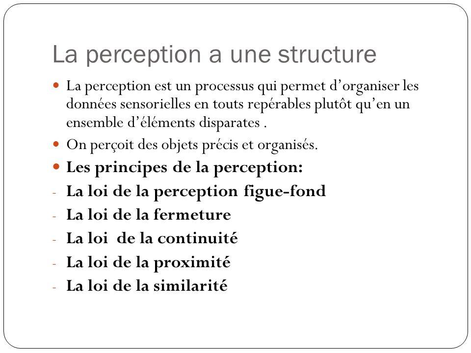 La perception a une structure