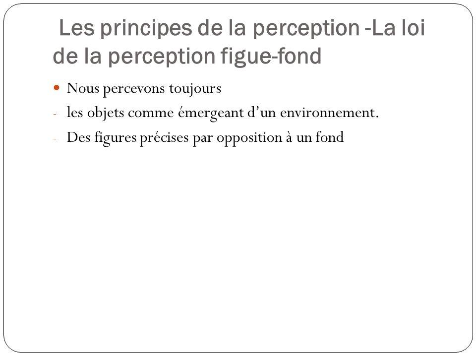 Les principes de la perception -La loi de la perception figue-fond