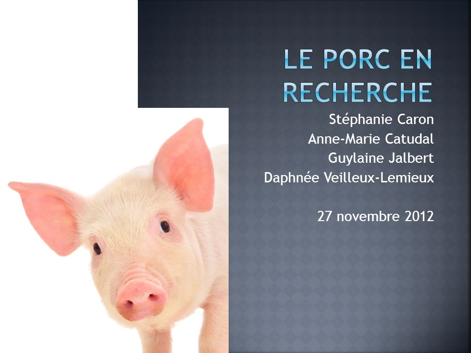 Le porc en recherche Stéphanie Caron Anne-Marie Catudal