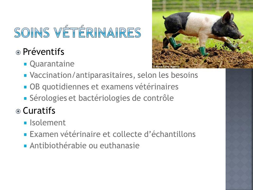 Soins vétérinaires Préventifs Curatifs Quarantaine