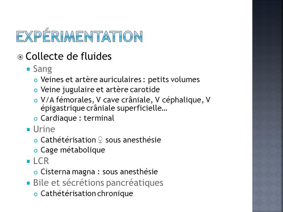 Expérimentation Collecte de fluides Sang Urine LCR