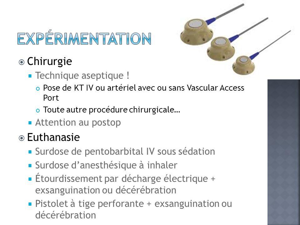 Expérimentation Chirurgie Euthanasie Technique aseptique !