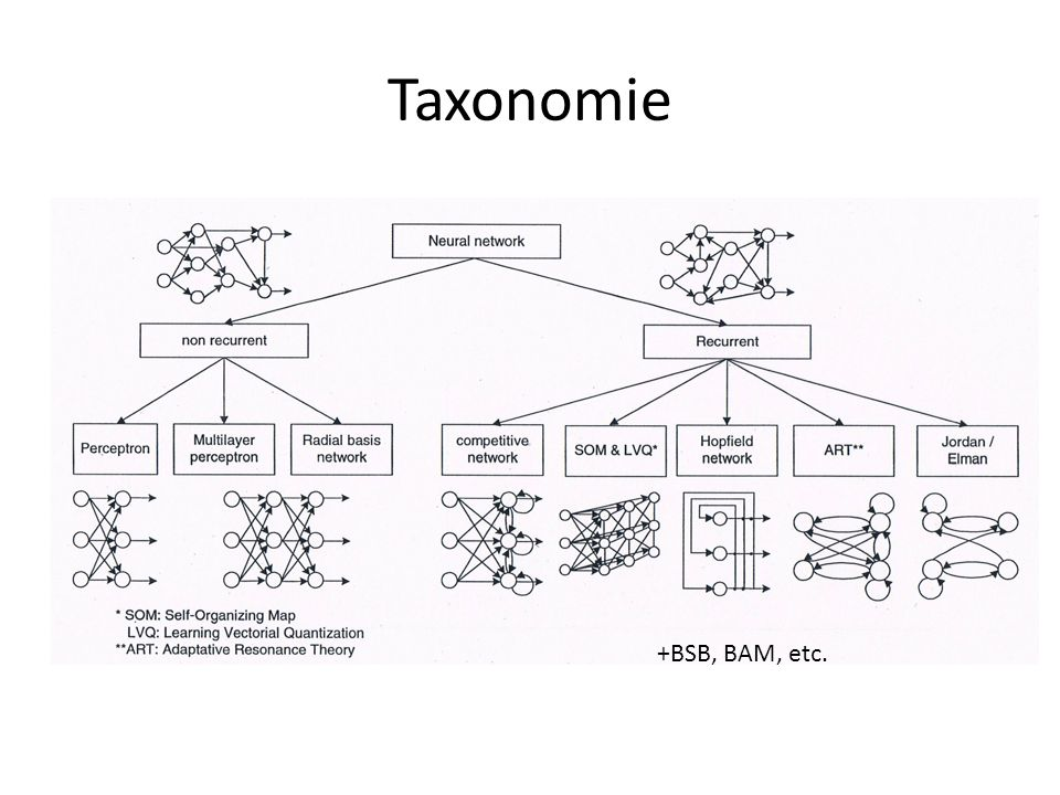 Taxonomie +BSB, BAM, etc.