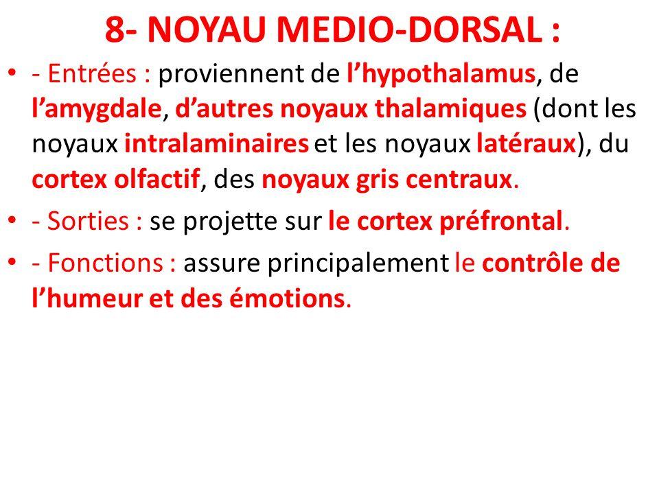 8- NOYAU MEDIO-DORSAL :