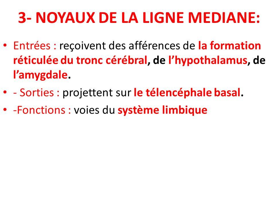 3- NOYAUX DE LA LIGNE MEDIANE: