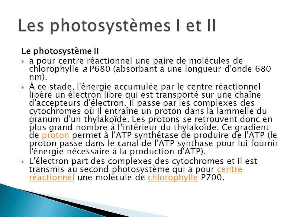 Les photosystèmes I et II