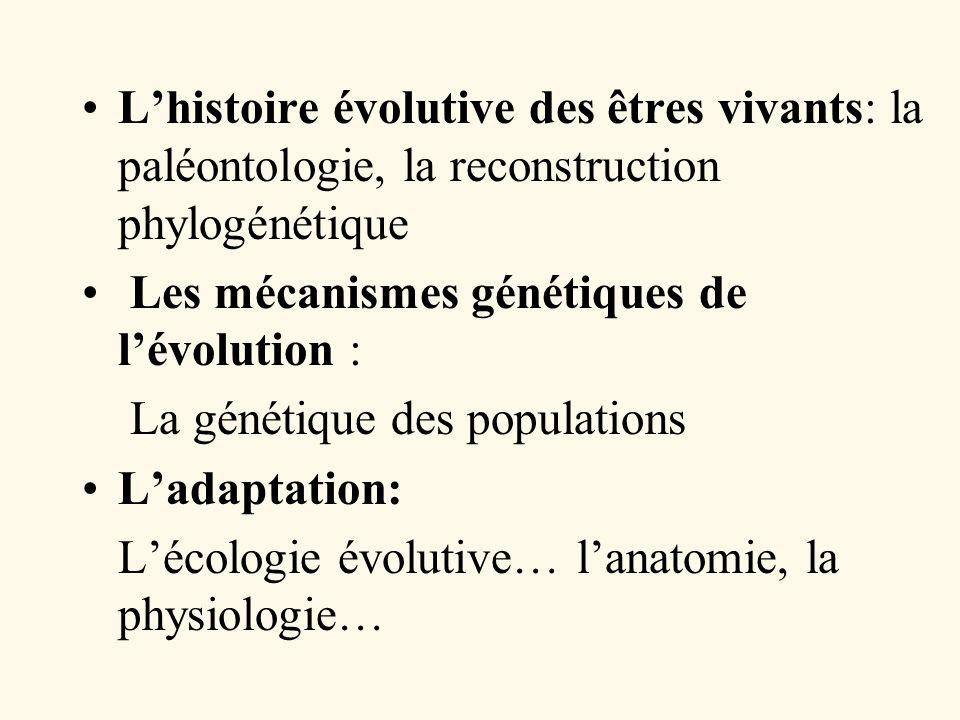 L'histoire évolutive des êtres vivants: la paléontologie, la reconstruction phylogénétique