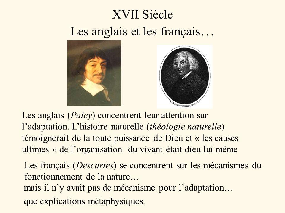 XVII Siècle Les anglais et les français…