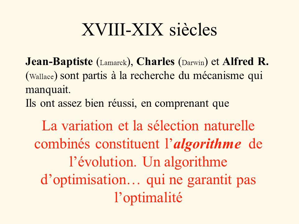 XVIII-XIX siècles Jean-Baptiste (Lamarck), Charles (Darwin) et Alfred R. (Wallace) sont partis à la recherche du mécanisme qui manquait.