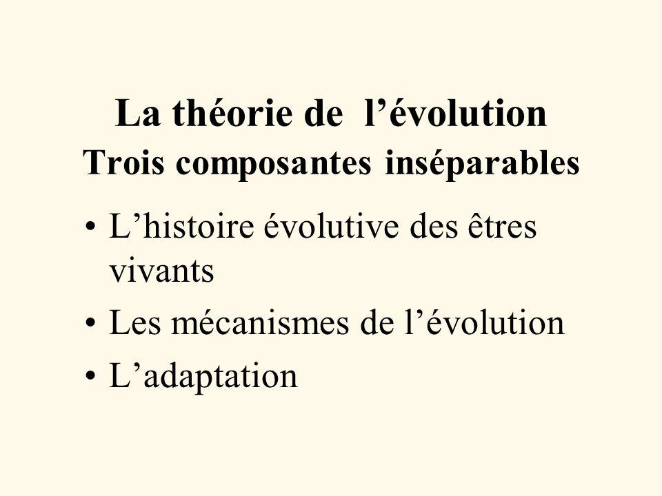 La théorie de l'évolution Trois composantes inséparables