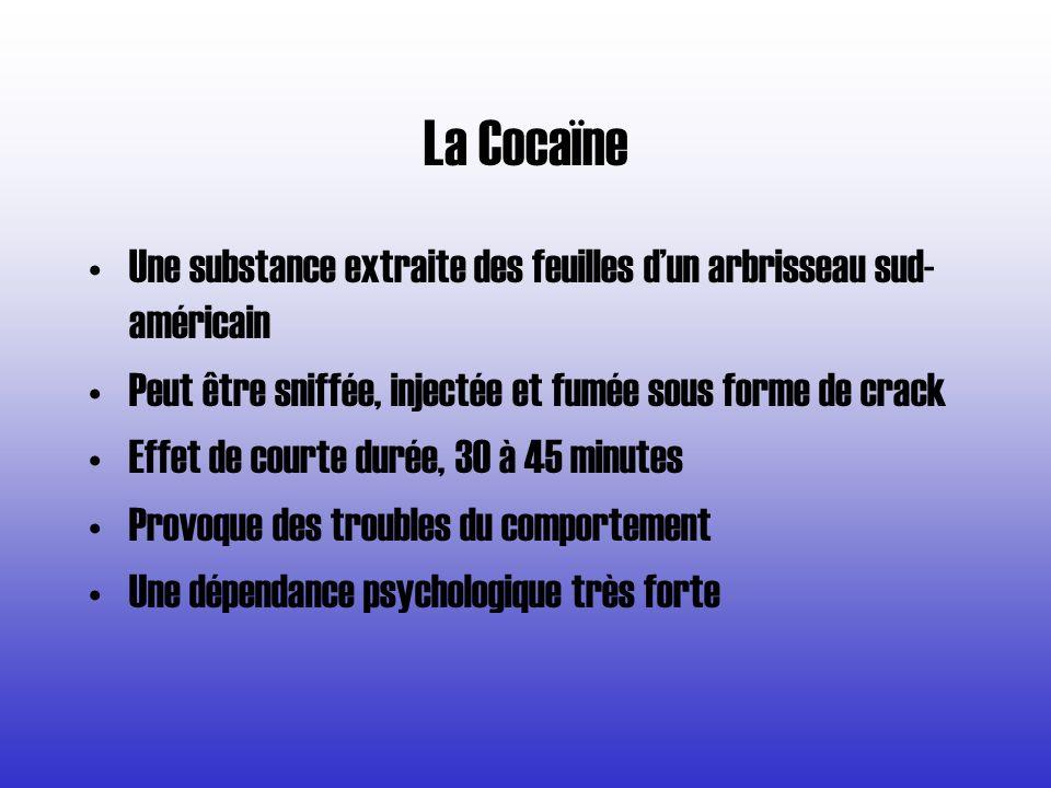 La Cocaïne Une substance extraite des feuilles d'un arbrisseau sud-américain. Peut être sniffée, injectée et fumée sous forme de crack.