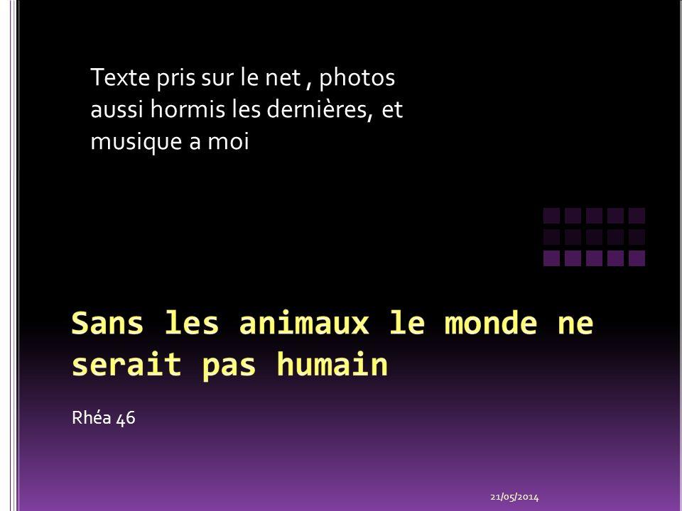 Sans les animaux le monde ne serait pas humain